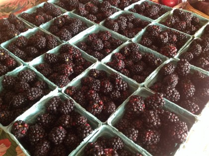 Blackberries at Badseed Farmers' Market